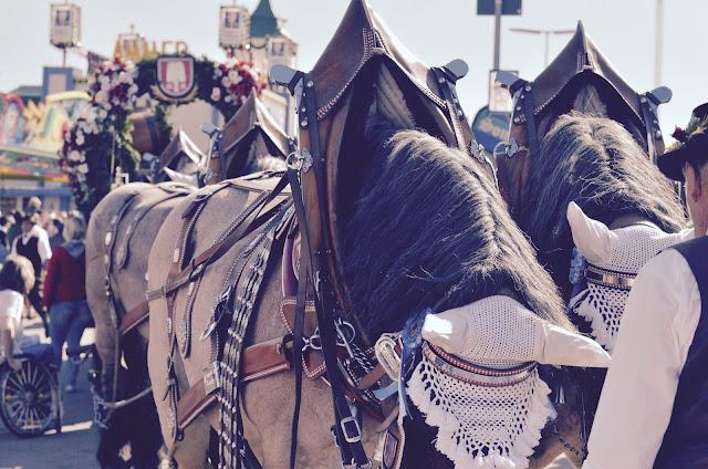 wiesn-pferde