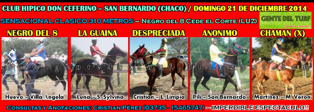 San Bernardo 21 - 12