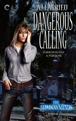 Dangerous Calling by A.J. Larrieu