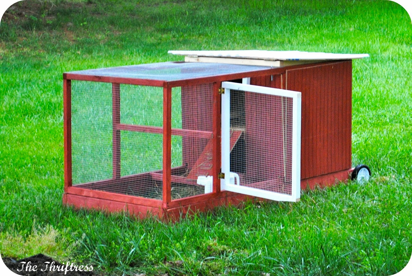 Backyard chicken house chicken coops for backyard flocks for Chicken coop size for 6 chickens