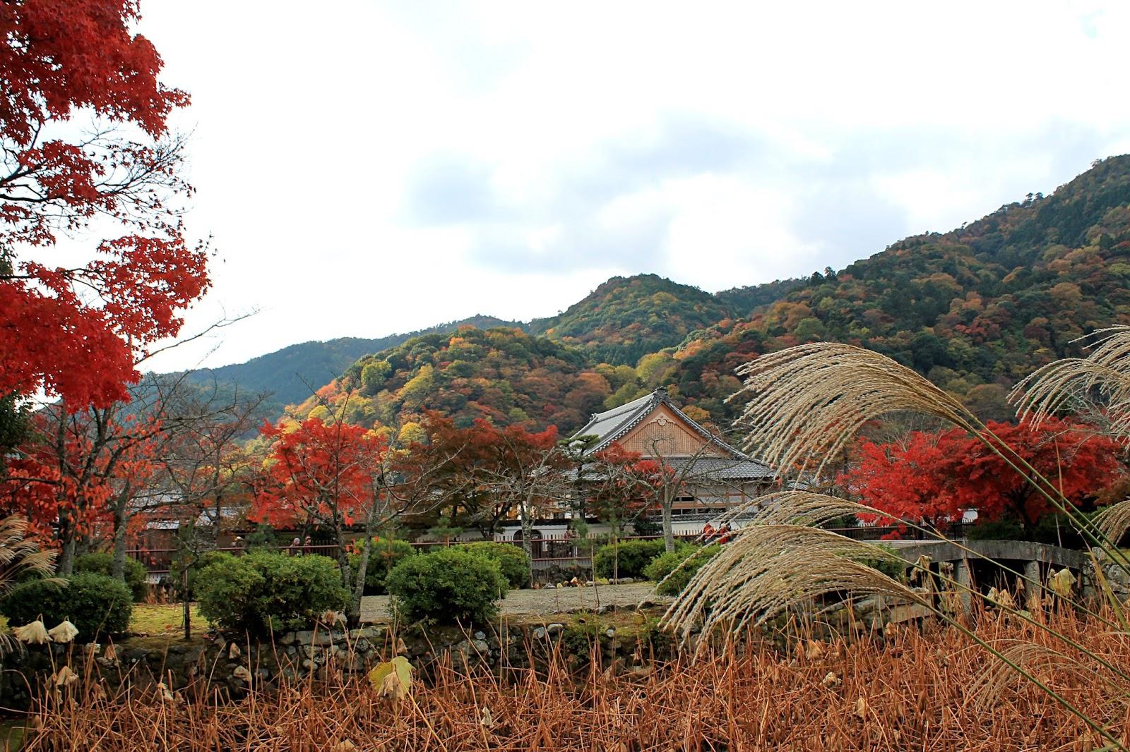 Arashiyama- Kyoto, Japan