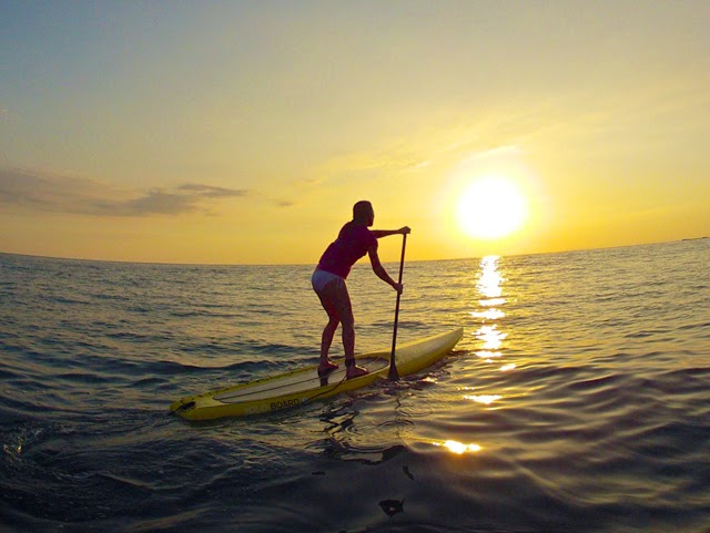paddle board rental, paddleboard rental, SUP rental, free delivery, Gulf Shores, Orange Beach, Ft. Morgan, Perdido Key, FL