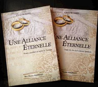 """ Une Alliance Eternelle "" disponible ici..."