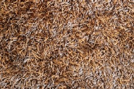 Carpet types carpet vidalondon for Types of carpet texture