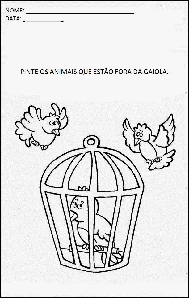 Atividades sobre animais - Gaiola