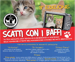 Concorso fotografico di beneficenza