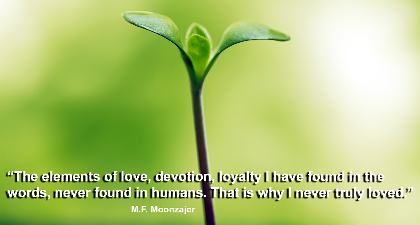 Devotion Quotes Facebook Covers Quotes And Sayings Love Quotes Devotion