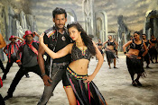 Pooja movie photos gallery-thumbnail-8