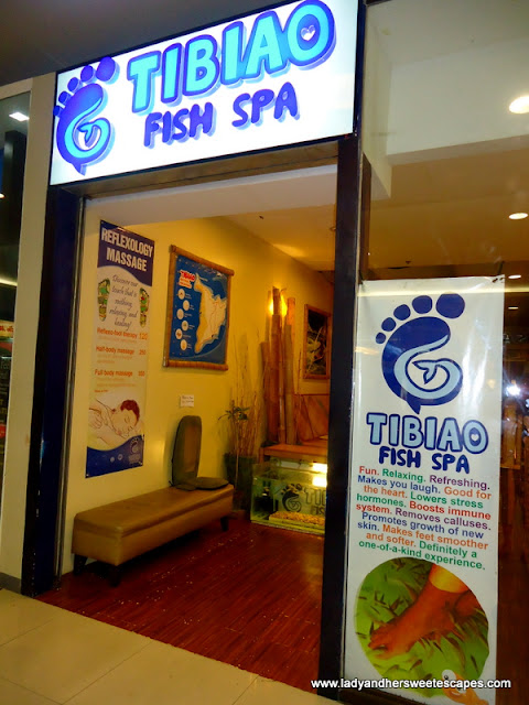 aquarium at Tibiao Fish Spa
