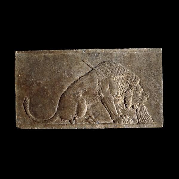 Nínive, en el norte de Irak Neo-Asirio, alrededor de 645 aC  El triunfo del rey asirio sobre la naturaleza  Este pequeño panel de alabastro fue parte de una serie de paneles de pared que mostraba una cacería real. Durante mucho tiempo ha sido aclamado como una obra maestra; la habilidad del artista asirio en la observación y la representación realista del animal es clara.  Golpeado por una de las flechas del rey, la sangre brota de la boca del león. Las venas se destacan en su cara. Desde un punto de vista moderno, es tentador pensar que el artista simpatizaba con el animal moribundo. Sin embargo, los leones eran considerados como símbolo de todo lo que era hostil a la civilización urbana y es más probable que el espectador estaba destinado a reír, no llores.  Hubo una muy larga tradición de caza de leones reales en Mesopotamia, con escenas similares conocidos de finales del cuarto milenio antes de Cristo. La conexión entre la realeza y leones probablemente fue traído a Europa occidental como resultado de las cruzadas en el AD siglos XIII XII y, cuando los leones comienzan a decorar escudos reales.