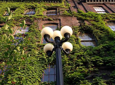 green%2Boffice %Category Photo