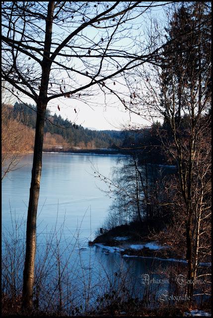 der Herrenbachstausee im Winter