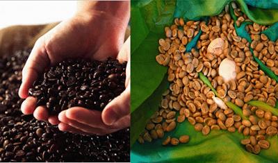 Selecto AA Yauco Coffee - Puerto Riko