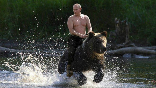 The Vineyard of the Saker: The homos want to boycott ... Vladimir Putin Funny Bear