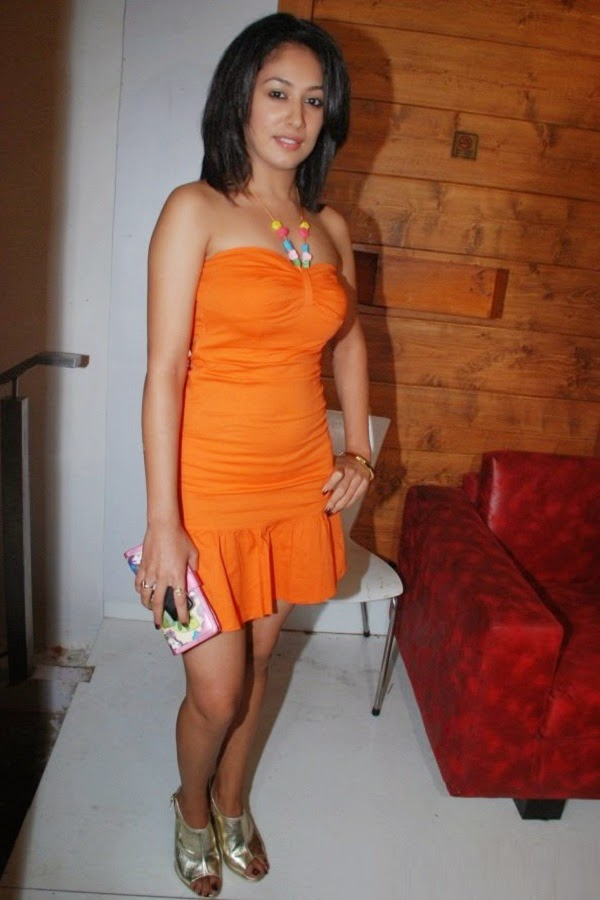 Anjali Pandey at Sheesha Sky Lounge party
