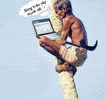 hình ảnh vui nhộn hài hước nhất wifi