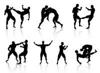 Japanese grappling, judo grappling, Karate kick, ninja styles