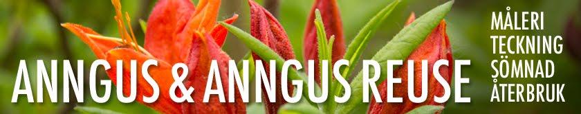 Anngus & Anngus reuse