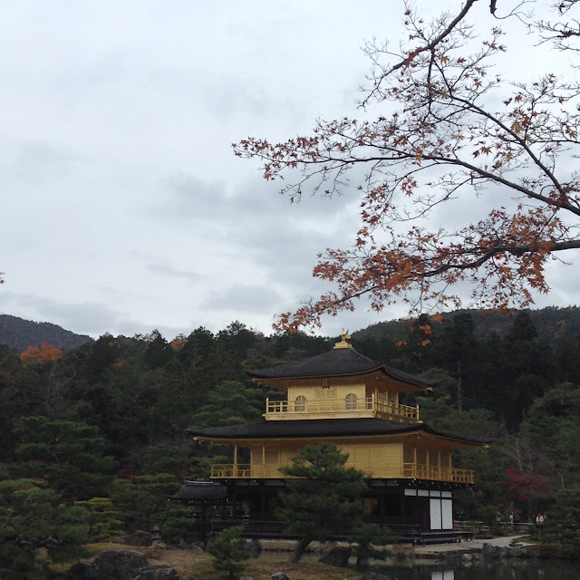 Kinkakuji, Momiji