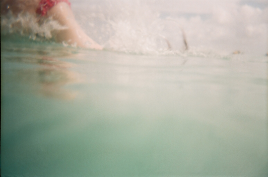 Underwater Photograph with Reusable Lomo Camera Dolphin