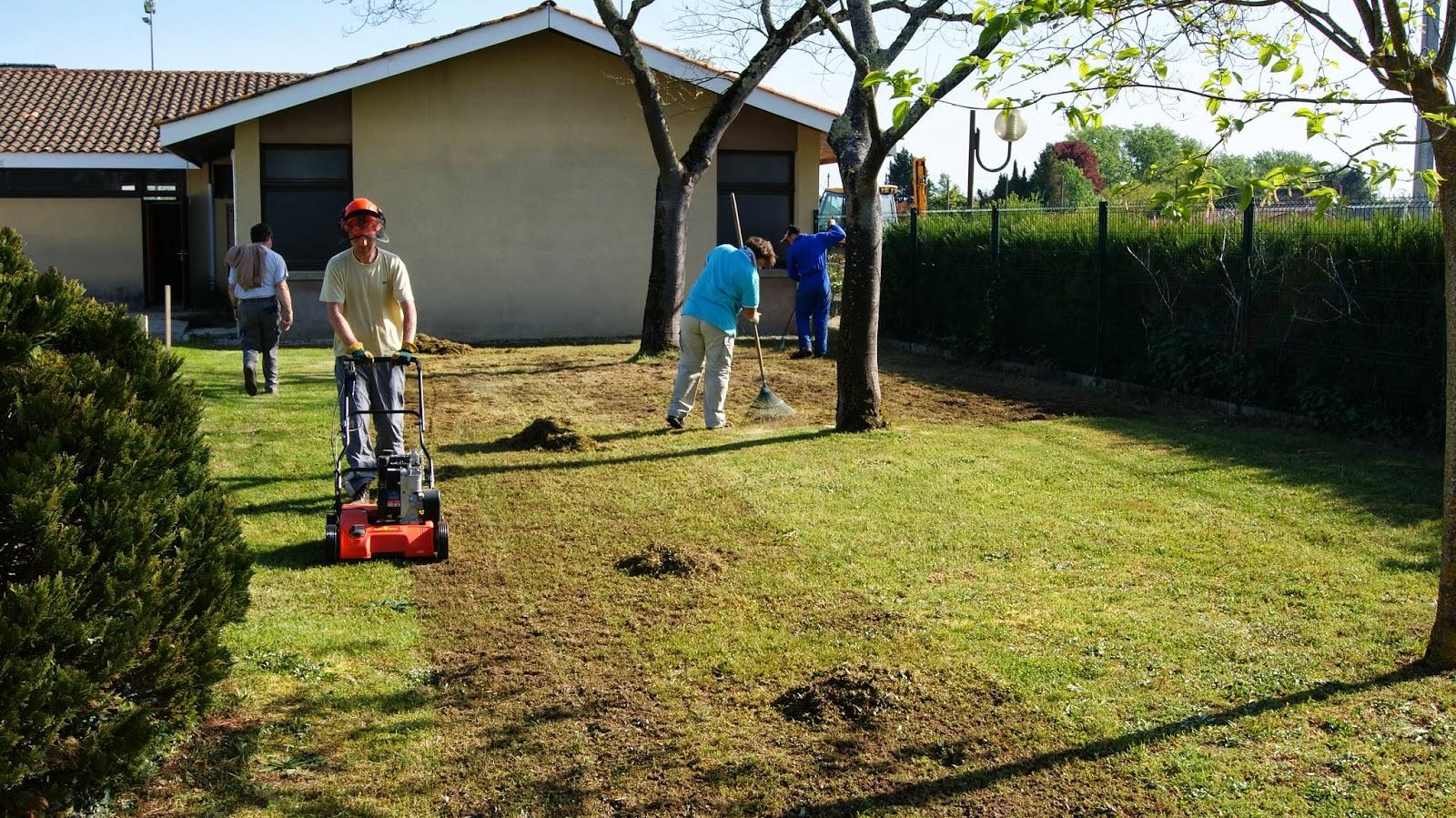 Formation ouvrier du paysage Scarificateur pelouse manuel