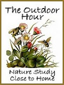 Our Nature Study