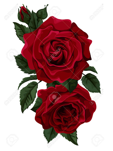 Día Rose Tarjetas Felicitaciones Imagenes Mensajes, images de rosas, tarjetas de flores, postales de flores preciosas, postales de rosas.