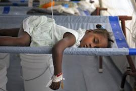 ONU é responsável por cólera no Haiti