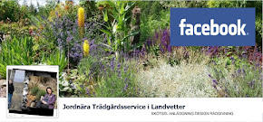 Flj oss p Facebook