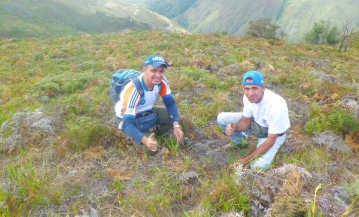 Andinurr dijo presente en Jornada Nacional de Reforestación