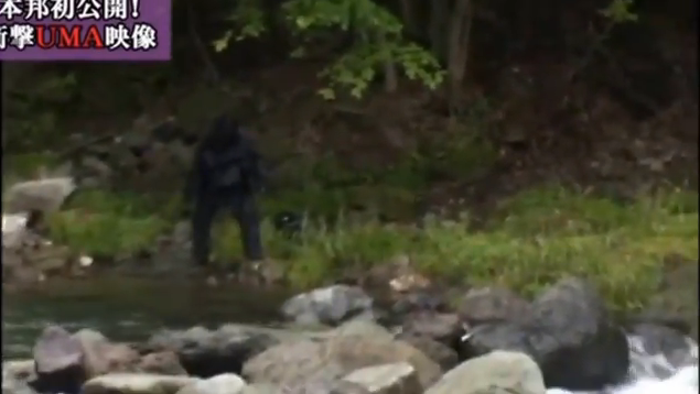 Japanese Bigfoot