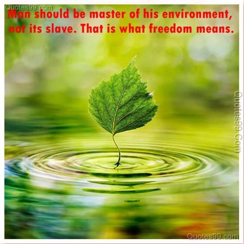 Quotes Environment Csr Ecosia