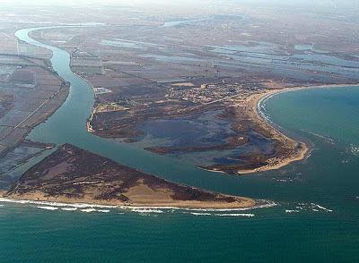 El Delta del Ebro. Río Ebro. Cataluña. España