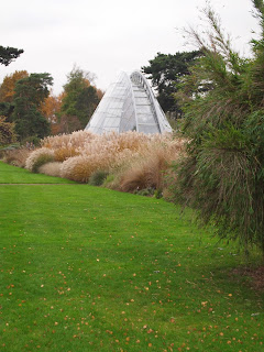 Autumn grasses in landscape design. Kew Gardens, London.
