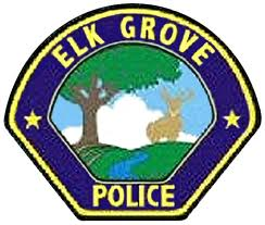 Woman Arrested After Allegedly Hitting Elk Grove Police Officer