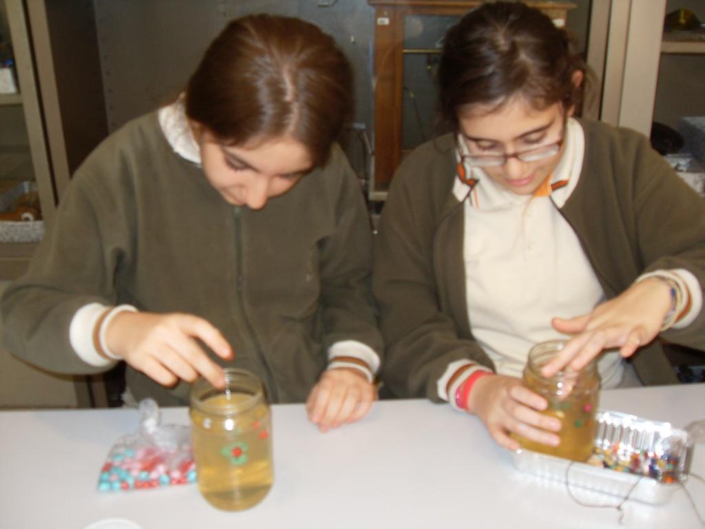 Bilim fen ve teknoloji kulübü hücre modeli çalışması