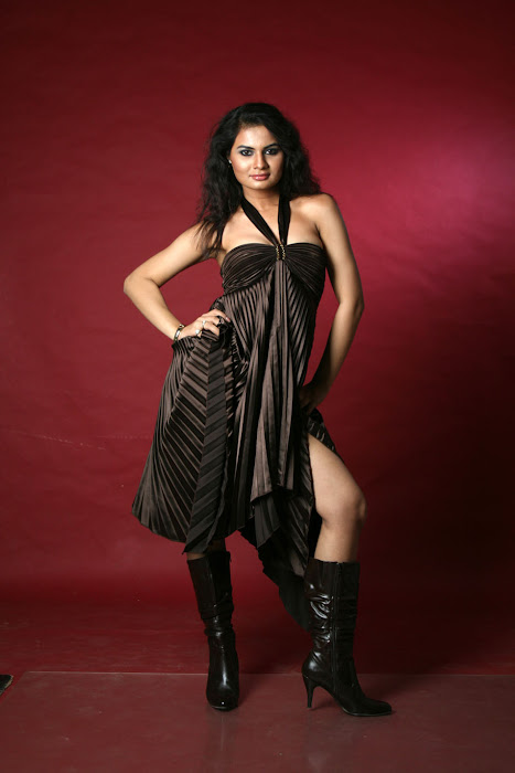 tosha dazzling shoot latest photos