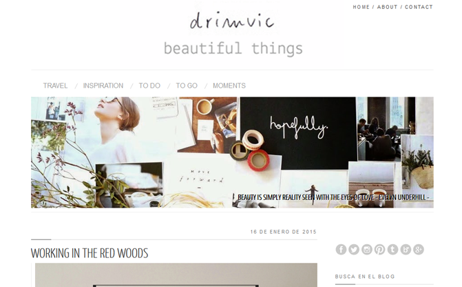 drimvic blog