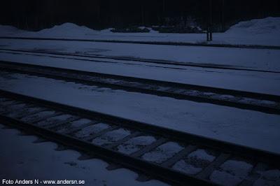 bangård, snö, skog, norrland