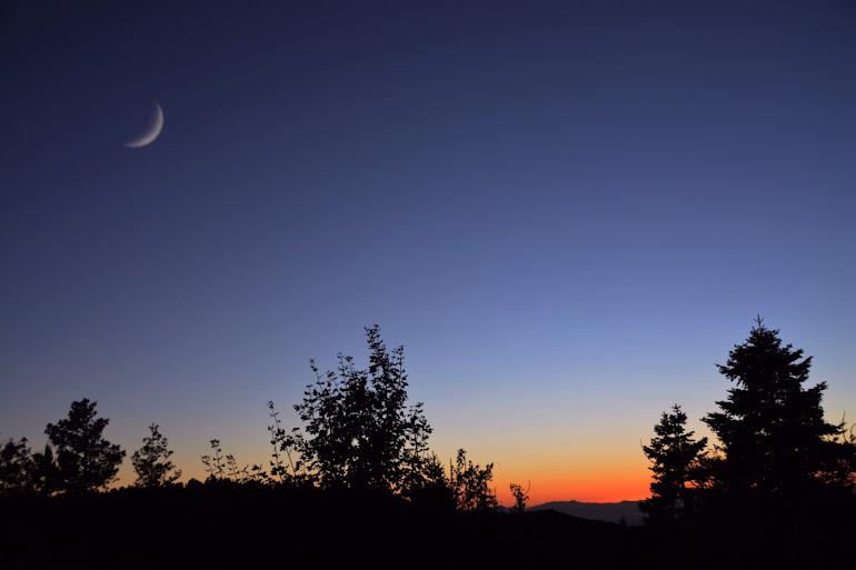 Crescent Night