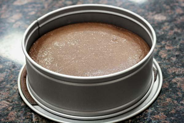 Flourless Chocolate Cake Without Springform Pan
