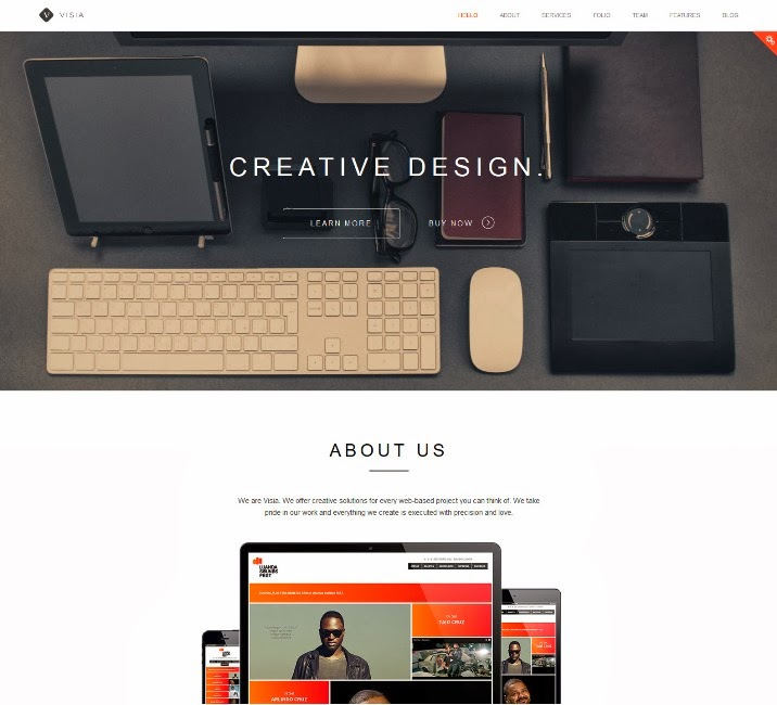 Visia - Responsive One Page Drupal Theme