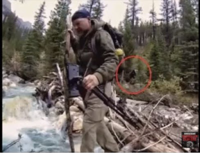 Survivorman Les Stroud Mindspeak