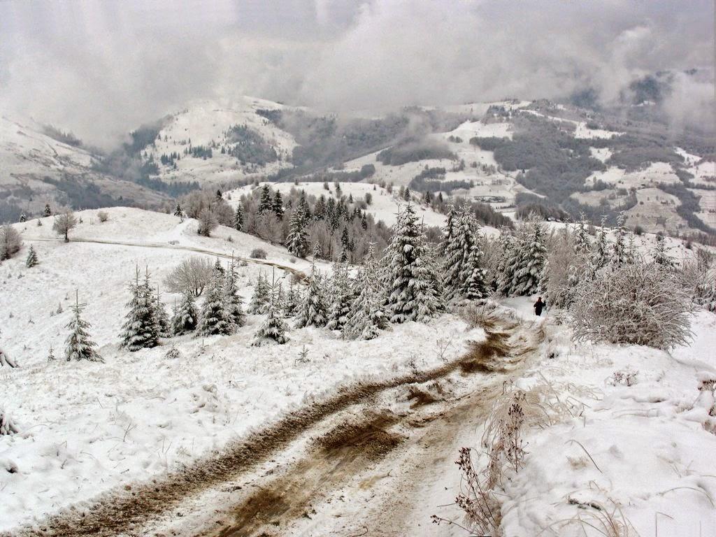 Vladeasa X-Trail, 21 Martie 2015, Munţii Apuseni. Iarna