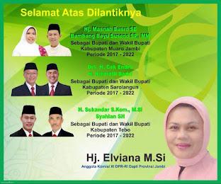 Sumbangsih Elviana Untuk Prov Jambi