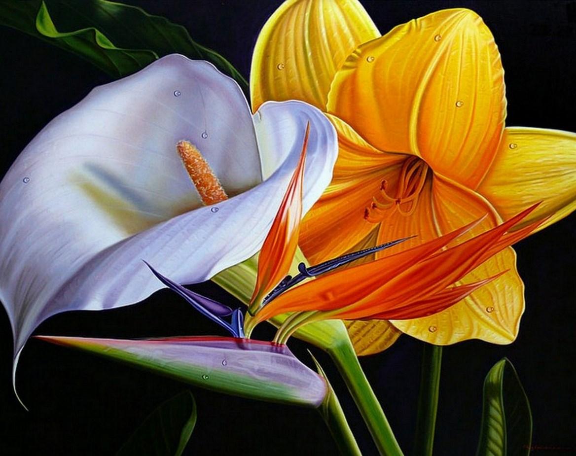 flores oleo sobre lienzo cuadros artísticos con flores reales