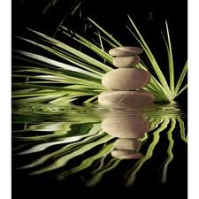 [Hình: Zen+001.jpg]