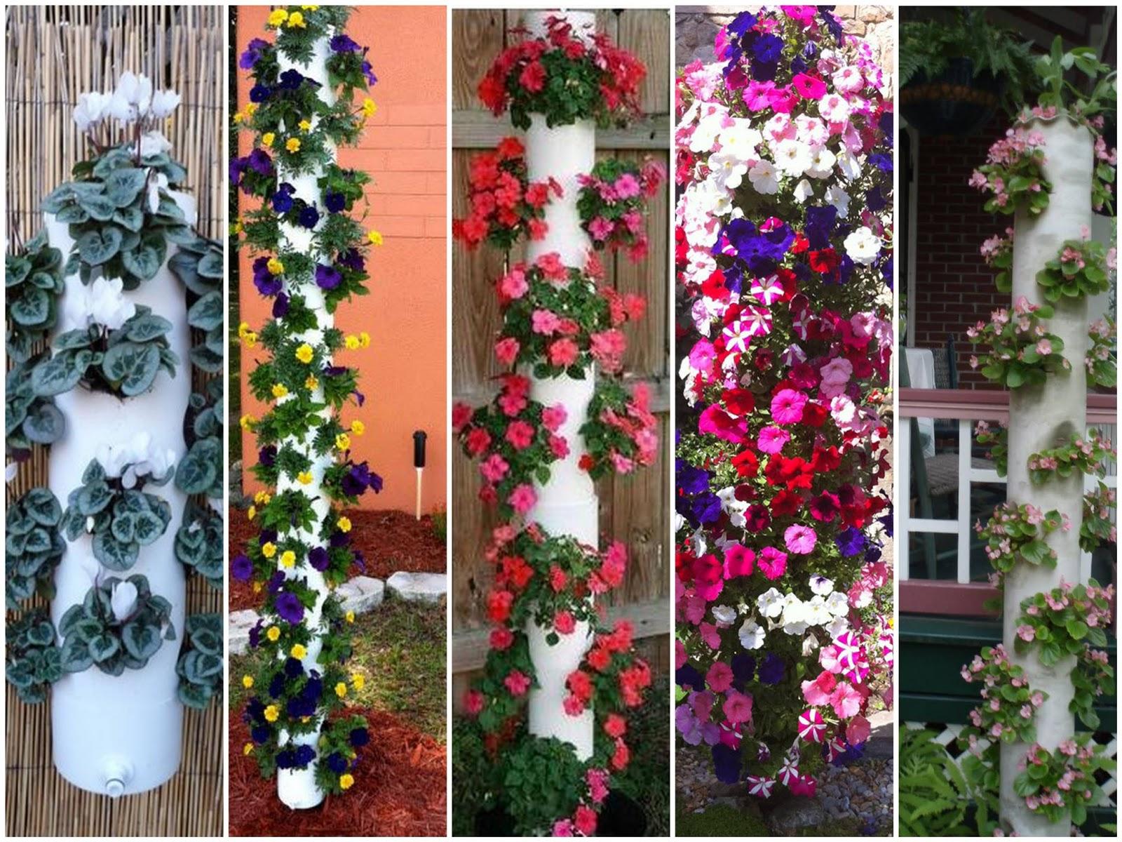 Plantas do meu jardim crie torres de cano de pvc e plante for Casas para jardin de pvc