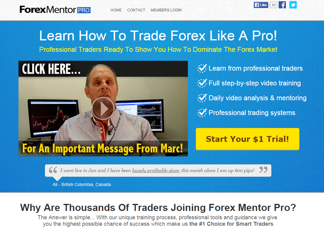 Forex for profits mentoring program