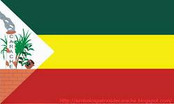 Bandera de Carache